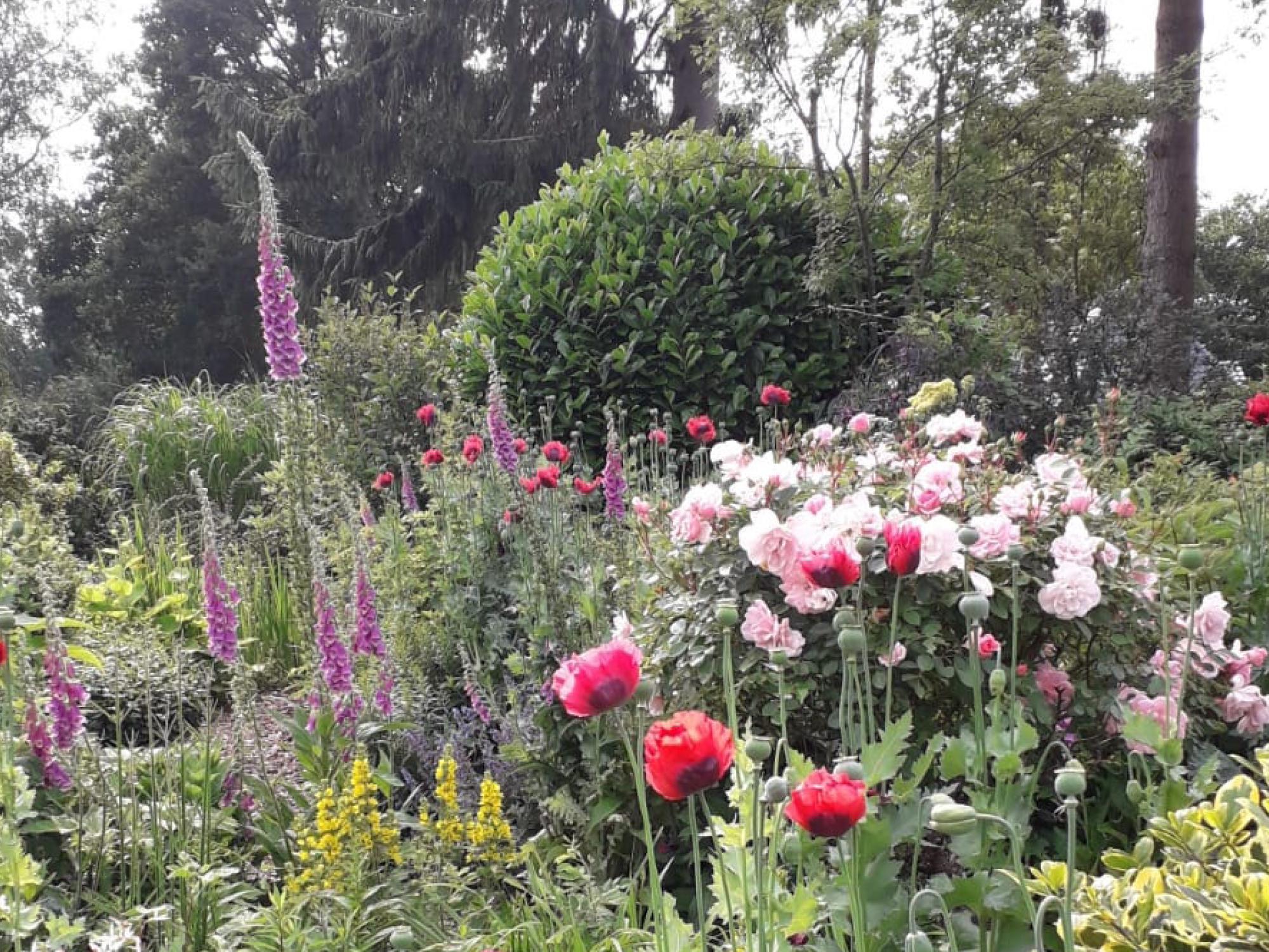 tuin-bloemenborder